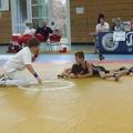 Berzirksmeisterschaften 2008 Neckargartach 020