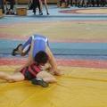 Berzirksmeisterschaften 2008 Neckargartach 027
