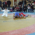 Berzirksmeisterschaften 2008 Neckargartach 031